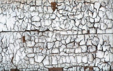 Background texture of dried cracked wood