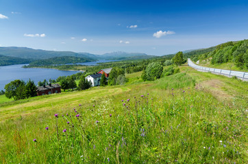 Beautiful Norwegian summer scenery