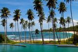Palms and sandy beach