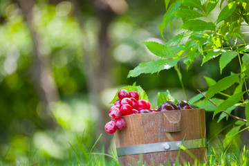 grape in wood basket