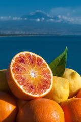 Dreaming of Sicily fruits