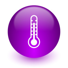thermometer internet icon