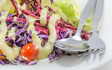 vegetable salad with cream on dish with fork and spoon