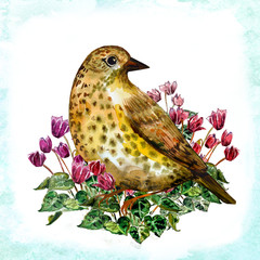 watercolor card with a bird
