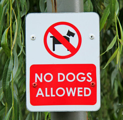 An Information Sign Banning Dogs from a Park Area.