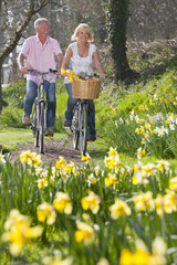 Smiling senior couple riding bicycles in sunny park with daffodils