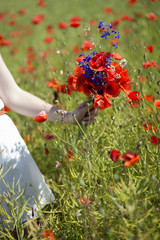 Woman with scarlet bouquet on field background