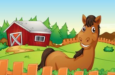 Horse and farm
