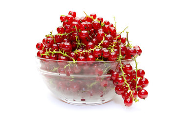 red currant in glass plate