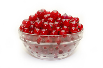 red currant in glass bowl