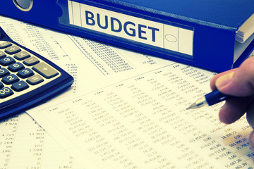 Budget Concept - Man working on budget report