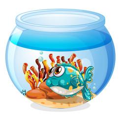 A fish inside the aquarium