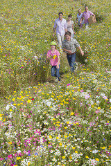 Smiling multi-generation family holding hands and walking among wildflowers in sunny meadow