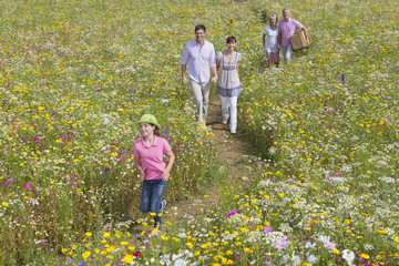 Smiling multi-generation family walking among wildflowers in sunny meadow