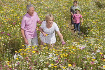 Smiling grandparents and grandchildren walking among wildflowers in sunny meadow