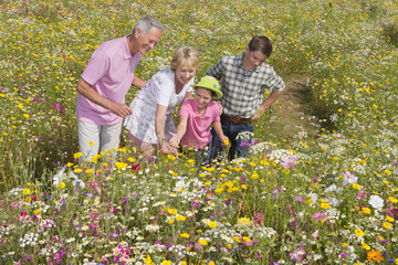 Smiling grandparents and grandchildren standing among wildflowers in  sunny meadow