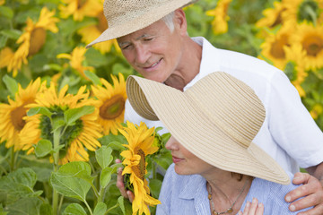 Couple smelling sunflowers in sunny meadow