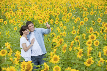 Smiling couple taking self-portrait among sunflowers in sunny meadow