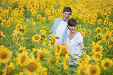 Smiling couple among sunflowers in sunny meadow