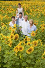Portrait of smiling multi-generation family among sunflowers in sunny meadow