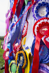Close up of equestrian rosettes hanging on door