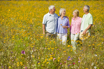 Smiling couples among wildflowers in sunny meadow