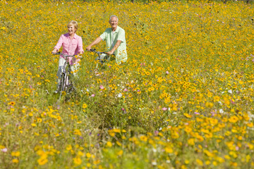 Smiling couple riding bicycles among wildflowers in sunny meadow