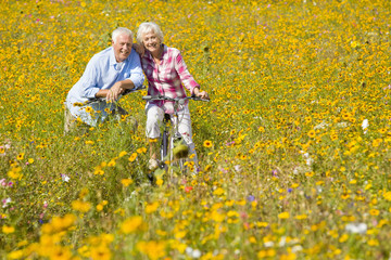 Portrait of smiling couple on bicycles among wildflowers in sunny meadow