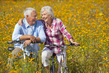 Smiling couple hugging on bicycles among wildflowers in sunny meadow