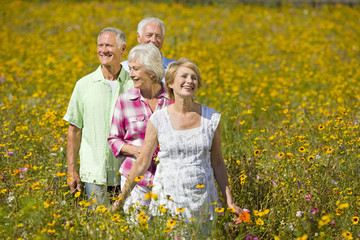 Smiling couples walking among wildflowers in sunny meadow