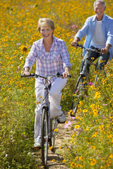 Smiling couples riding bicycles among wildflowers in sunny meadow