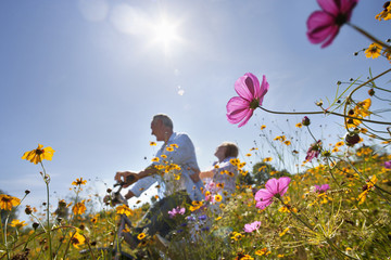 Senior couple on bicycle in sunny wildflower meadow