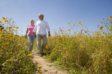 Smiling senior couple walking on path through wildflower meadow