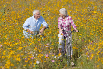 Happy senior couple riding bicycles in sunny wildflower meadow