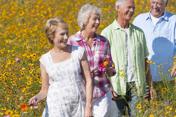 Happy senior couples walking in sunny wildflower meadow