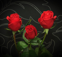Three red roses over black backround