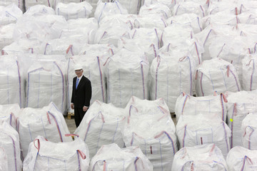 Portrait of businessman standing among large bags of recycled plastic pellets in warehouse