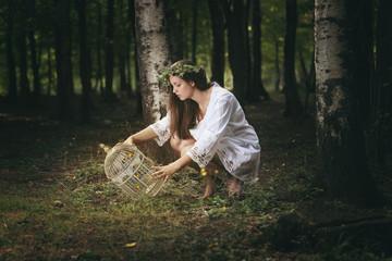 Trap for fairies