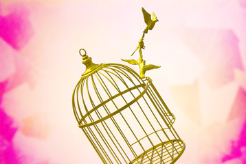 art empty bird golden cage colorful background