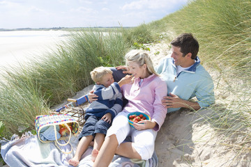Young family having picnic at beach