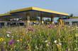 canvas print picture - Tankstelle in Wildblumenwiese