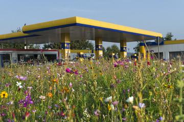 Tankstelle in Wildblumenwiese