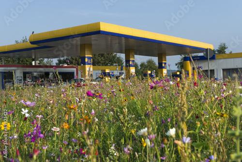 canvas print picture Tankstelle in Wildblumenwiese