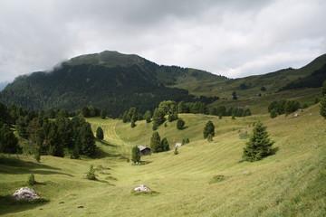 Il Col Raiser in Val Gardena