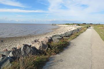 Charente-Maritime - Marsilly - Chemin du littoral