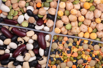 Mixed beans in a containers