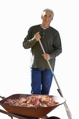 senior man tidying leaves into wheelbarrow, cut out