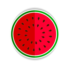 watermelon green icon