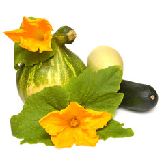 Pumpkin, squash and flowers with leaves