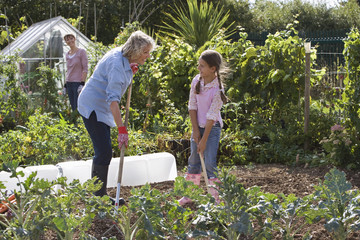Girl (9-11) and grandmother digging in garden, smiling, mother standing beside greenhouse, watching
